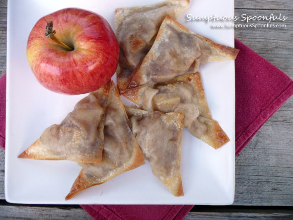 Apple Pie Wontons {Baked ~ Low Sugar}