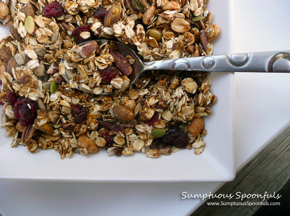 Maple Spice Pumpkin Cranberry Granola ~ www.SumptuousSpoonfuls.com