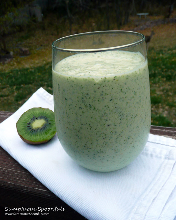 Tropical Kiwi Monster Protein Kale Smoothie