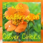 featured on Clever Chicks