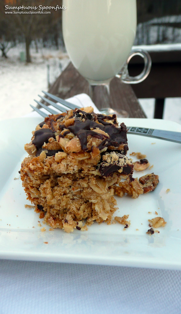 Chocolate Peanut Butter Oatmeal Crumble Bars