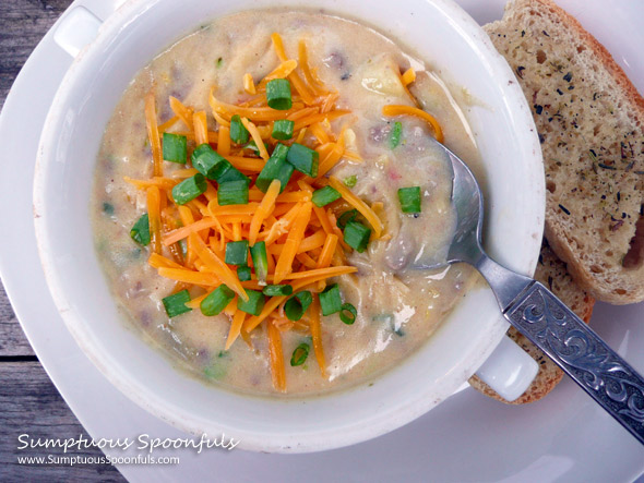 Green Chile Cheeseburger Soup ~ Sumptuous Spoonfuls #cheeseburger #soup #recipe