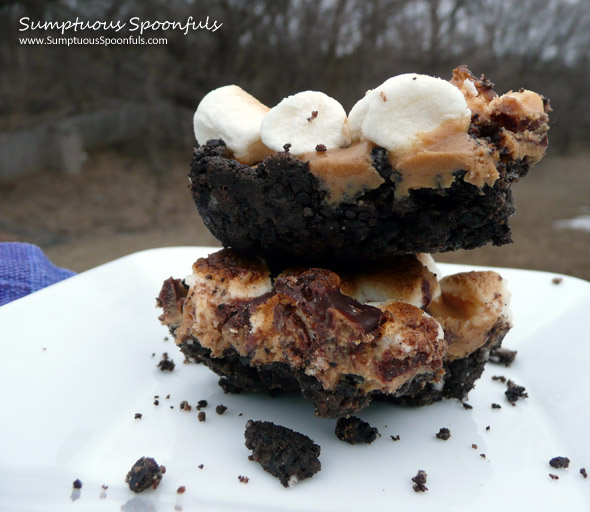 Peanut Butter S'more-o Bars