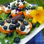 Honey Walnut Goat Cheese Apricots with Blueberries ~ Sumptuous Spoonfuls #apricot #cheese #recipe