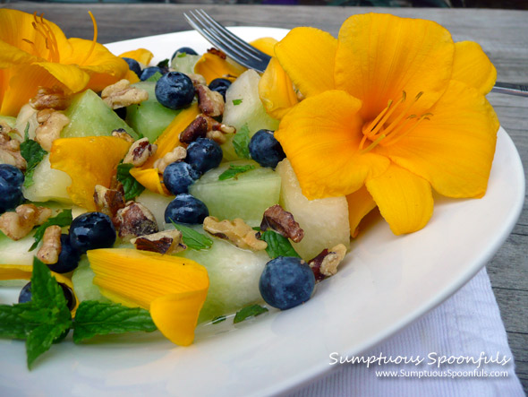 Minted Honeydew Blueberry Walnut Salad