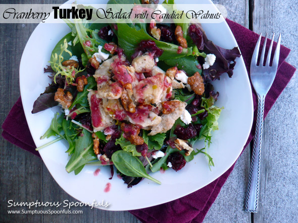 Cranberry Turkey Salad with Goat Cheese & Candied Walnuts