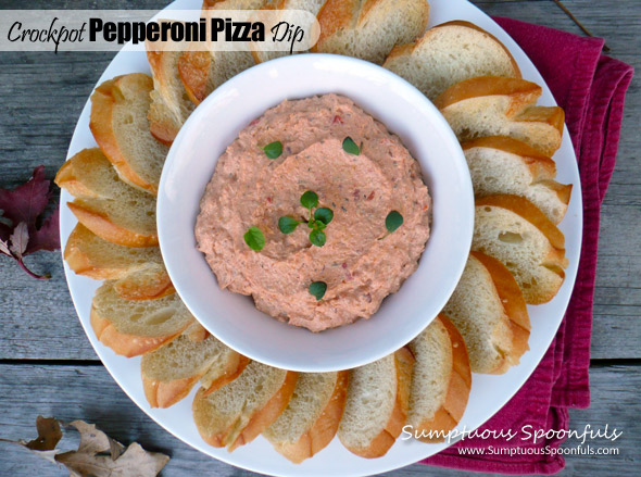 Crock Pot Pepperoni Pizza Dip