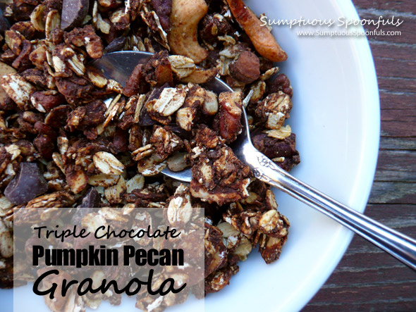 Triple Chocolate Pumpkin Pecan Granola
