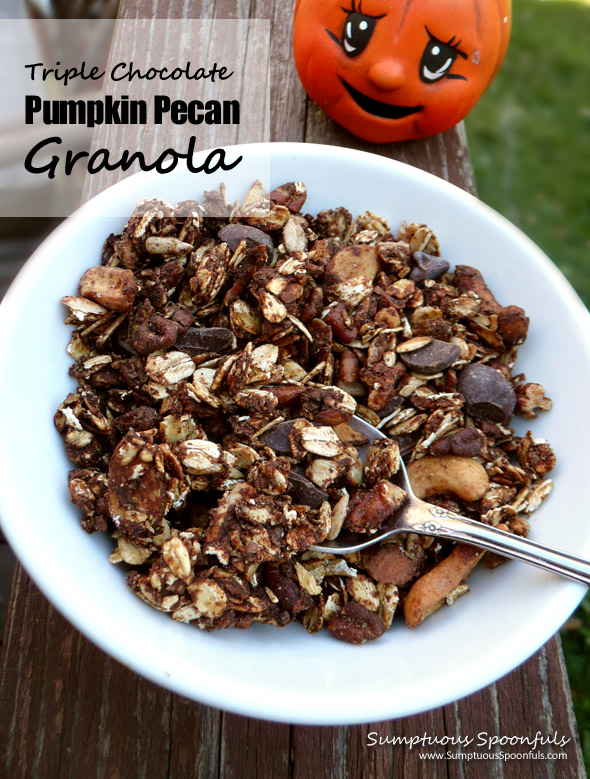 Triple Chocolate Pumpkin Pecan Granola ~ Sumptuous Spoonfuls #granola #recipe