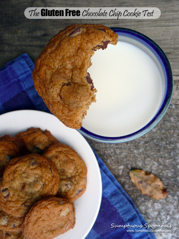 "Alton Brown's ""The Chewy"" Gluten Free Chocolate Chip Cookie vs Mrs. Fields Blue Ribbon Chocolate Chip Cookie: which one will win?"