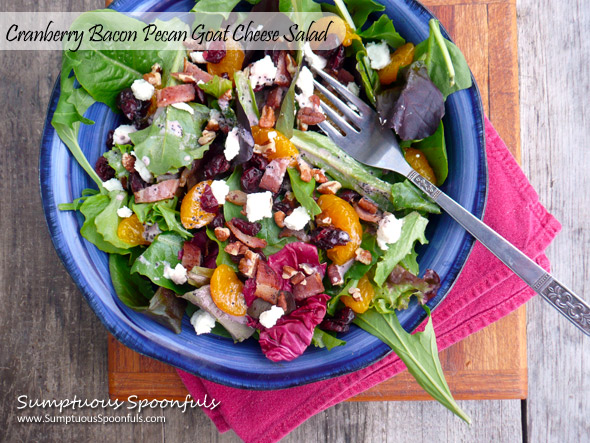 Cranberry Bacon Pecan Goat Cheese Salad
