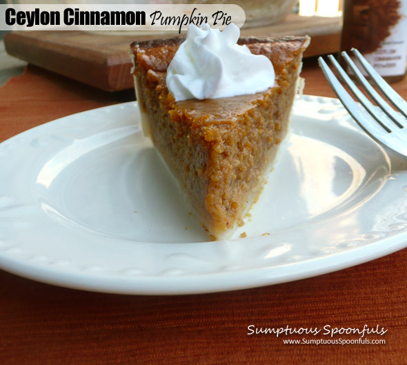 Simple Ceylon Cinnamon Pumpkin Pie