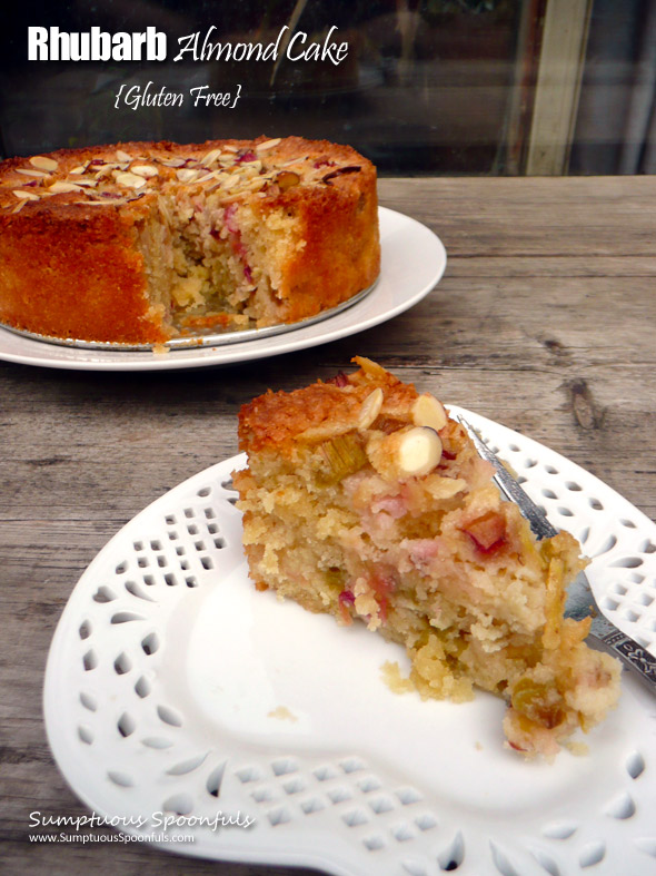 Rhubarb Almond Cake Gluten Free Sumptuous Spoonfuls Dessert