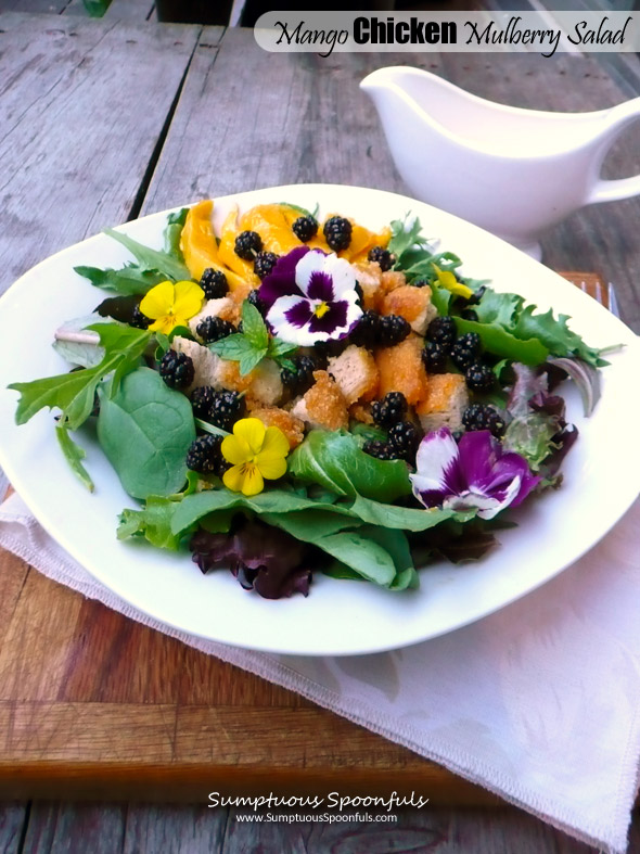 Mango Chicken Mulberry Salad with Mango Lavender Key Lime Yogurt Dressing