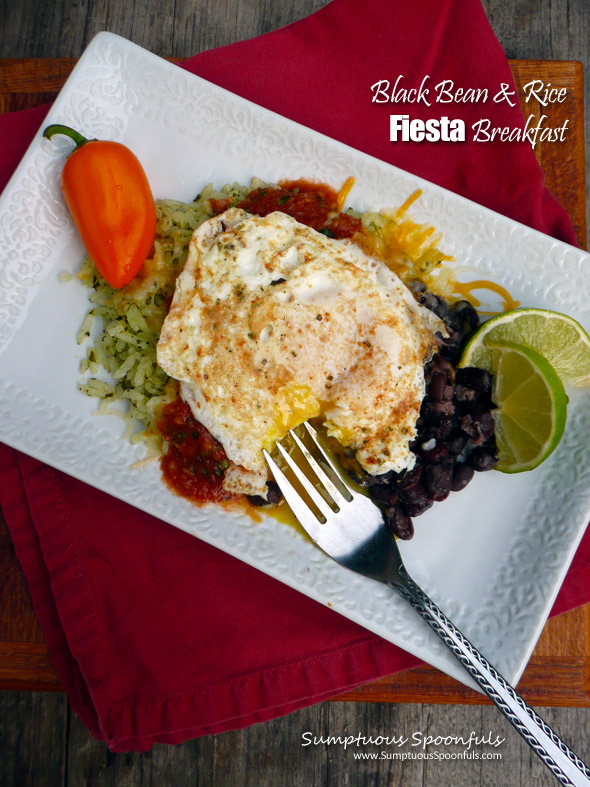 Black Bean & Rice Fiesta Breakfast