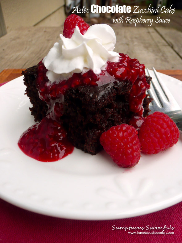Aztec Chocolate Zucchini Cake with Raspberry Sauce ~ Sumptuous Spoonfuls #chocolate #raspberry #zucchini #cake #recipe