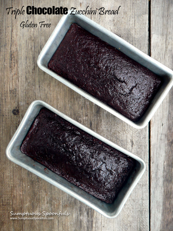 Gluten Free Triple Chocolate Zucchini Bread ~ Sumptuous Spoonfuls #glutenfree #chocolate #zucchini #bread #recipe