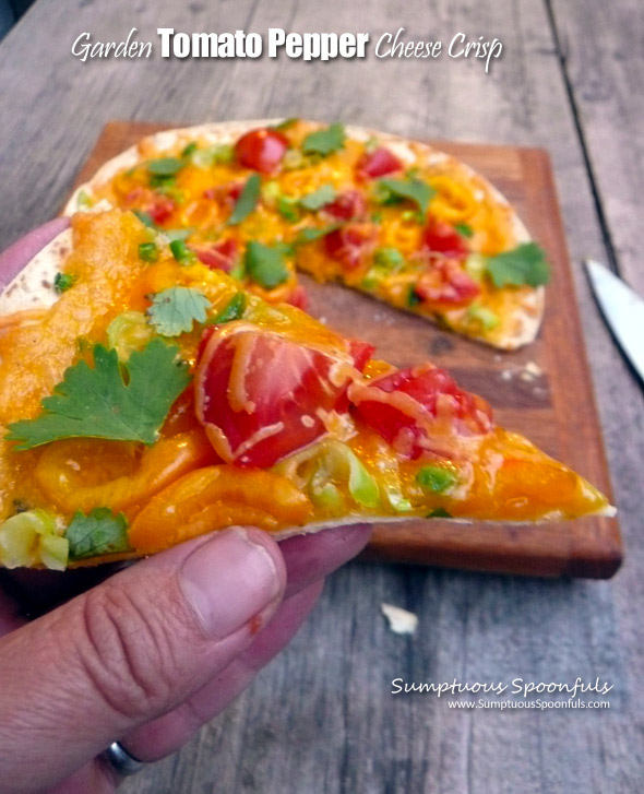 Garden Tomato Pepper Cheese Crisp ~ Sumptuous Spoonfuls #easy #cheesy #tomato #pepper #recipe