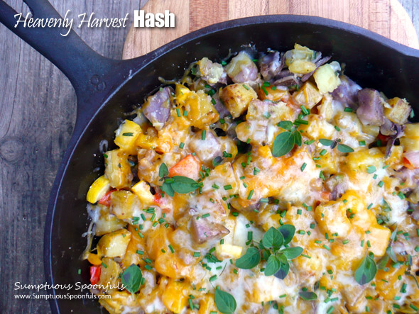 Heavenly Harvest Hash ~ Sumptuous Spoonfuls #garden #potato #hash #recipe