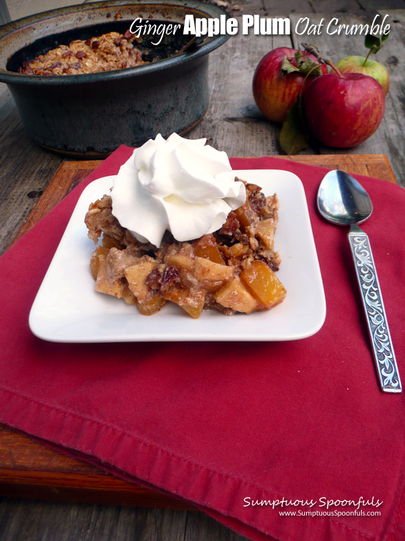 Ginger Apple Plum Oat Crumble ~ Sumptuous Spoonfuls #fruity #baked # ...
