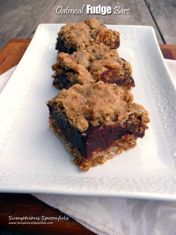 Oatmeal Fudge Bars ~ Sumptuous Spoonfuls #chocolate #oatmeal #decadent #dessert #recipe