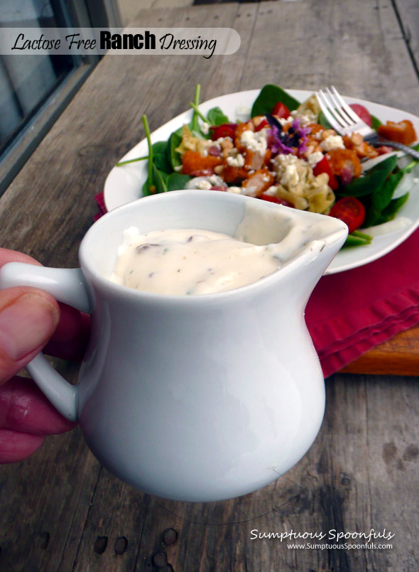 Lactose Free Ranch Dressing ~ #nondairy #ranch #dressing #dip #recipe