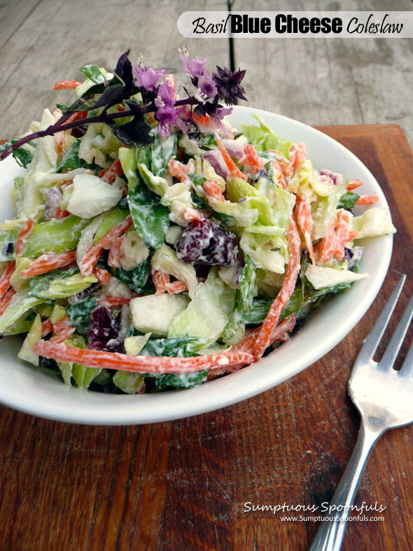 Basil Blue Cheese Coleslaw with Dried Cranberries & Greek Yogurt
