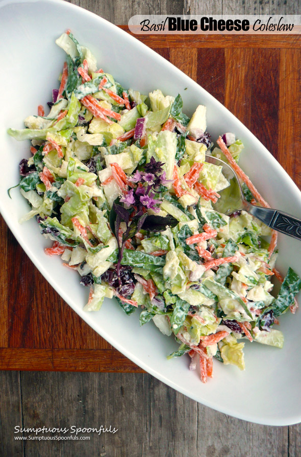 Basil Blue Cheese Coleslaw with Cranberries & Greek Yogurt ~ Sumptuous Spoonfuls #healthy #bluecheese #coleslaw #recipe