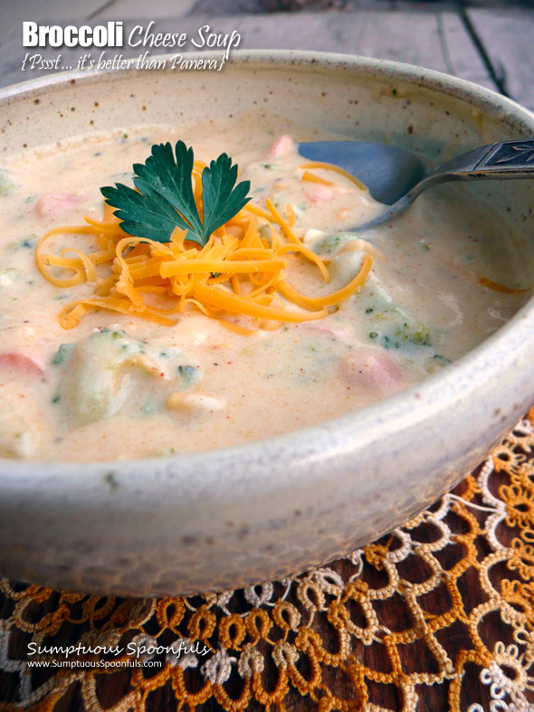 Better than Panera Broccoli Cheese Soup ~ Sumptuous Spoonfuls #copycat #supercreamy #broccoli #cheddar #soup #recipe