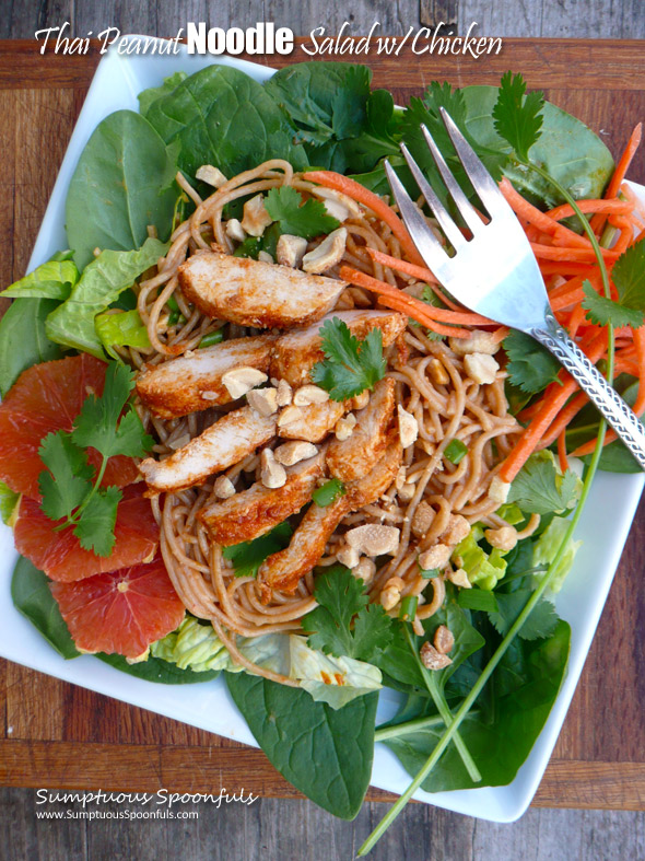 Valuable Asian chicken noodle salad are mistaken