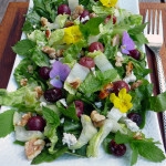 Roasted Grape & Walnut Salad with blue cheese, fresh mint and a maple ginger yogurt dressing ~ Sumptuous Spoonfuls #grape #salad #recipe