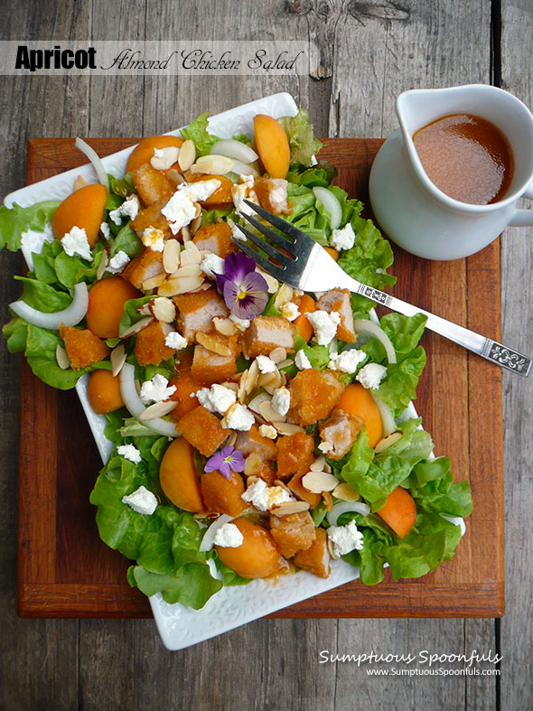Apricot Almond Chicken Salad with Goat Cheese, Vidalia Onion and a Honey Chipotle Apricot Vinaigrette ~ Sumptuous Spoonfuls #dinner #salad #recipe
