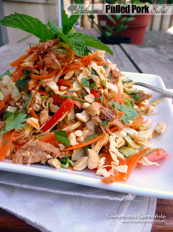 Vietnamese Pulled Pork Salad