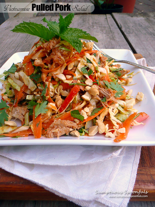 Vietnamese Pulled Pork Salad ~ Sumptuous Spoonfuls #easy #cabbage #pork #salad #recipe