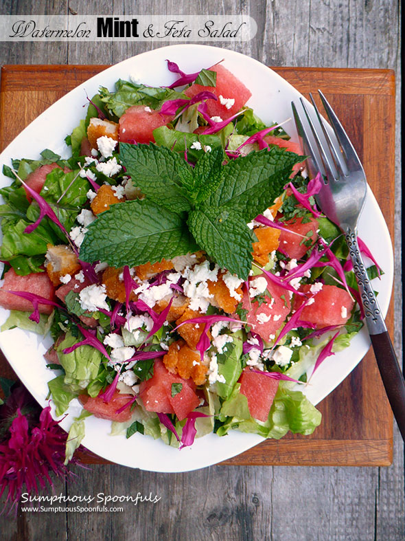 Watermelon, Mint & Feta Salad with Chicken, Bee Balm & a Honey Lime Margarita Vinaigrette ~ Sumptuous Spoonfuls #refreshing #summer #salad #recipe