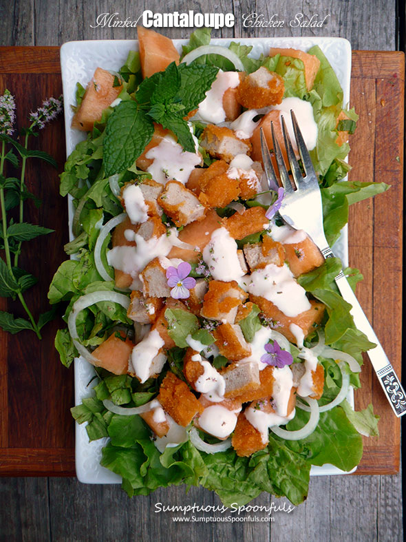 Minted Cantaloupe Chicken Salad with Minted Yogurt Dressing ~ Sumptuous Spoonfuls #summer #melon #salad #recipe