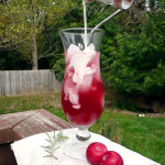 Rosemary Plum Italian Cream Sodas ~ Sumptuous Spoonfuls #homemade #Italian #soda #recipe