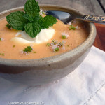 Chilled Mint Mango Cantaloupe Soup ~ Sumptuous Spoonfuls #dessert #smoothie #soup #recipe