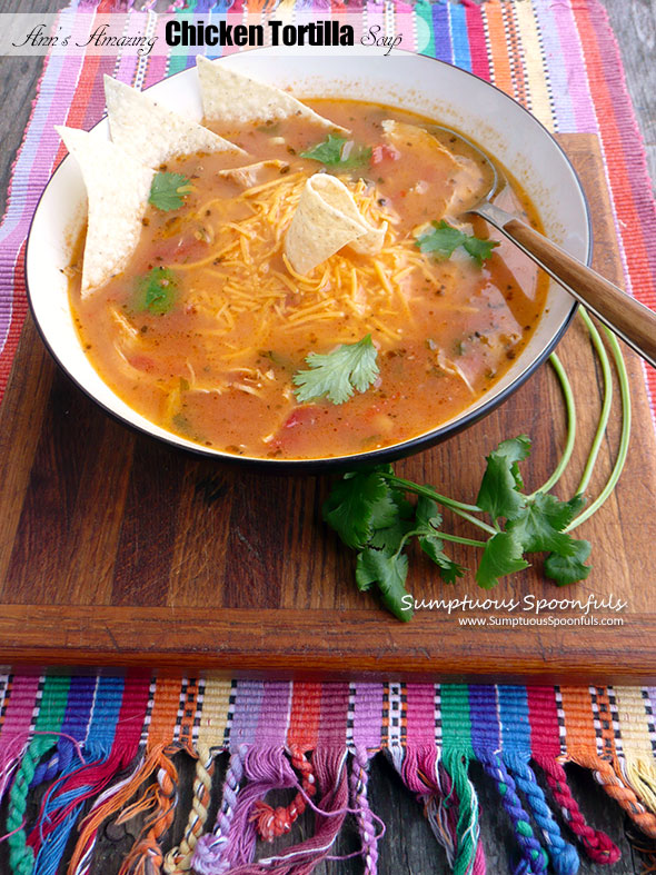 Ann's Amazing Chicken Tortilla Soup