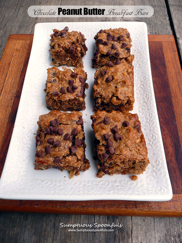 Chocolate Peanut Butter Breakfast Bars ~ Sumptuous Spoonfuls #PB #oats #breakfast #chocolate #recipe