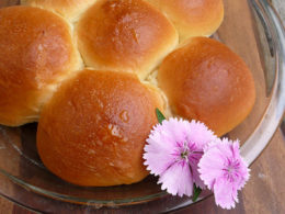 Bread Machine Hawaiian Rolls Sumptuous Spoonfuls