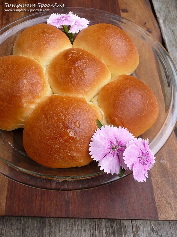 Bread Machine Hawaiian Rolls