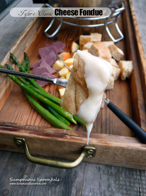 Tyler's Classic Cheese Fondue ~ Sumptuous Spoonfuls #cheese #fondue #recipe #TylerFlorence #YUM!