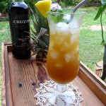 Dirty Mai Tai Cocktail ~ Sumptuous Spoonfuls #tropical #rum #orange #pineapple #cocktail #recipe