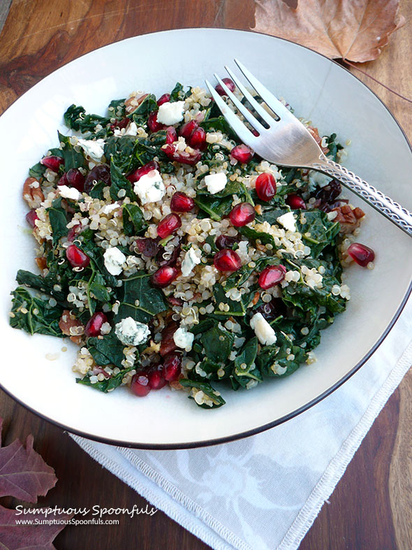 Cranberry Kale Quinoa Salad ~ Sumptuous Spoonfuls #holiday #salad #recipe