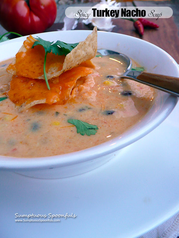 Spicy Turkey Nacho Soup