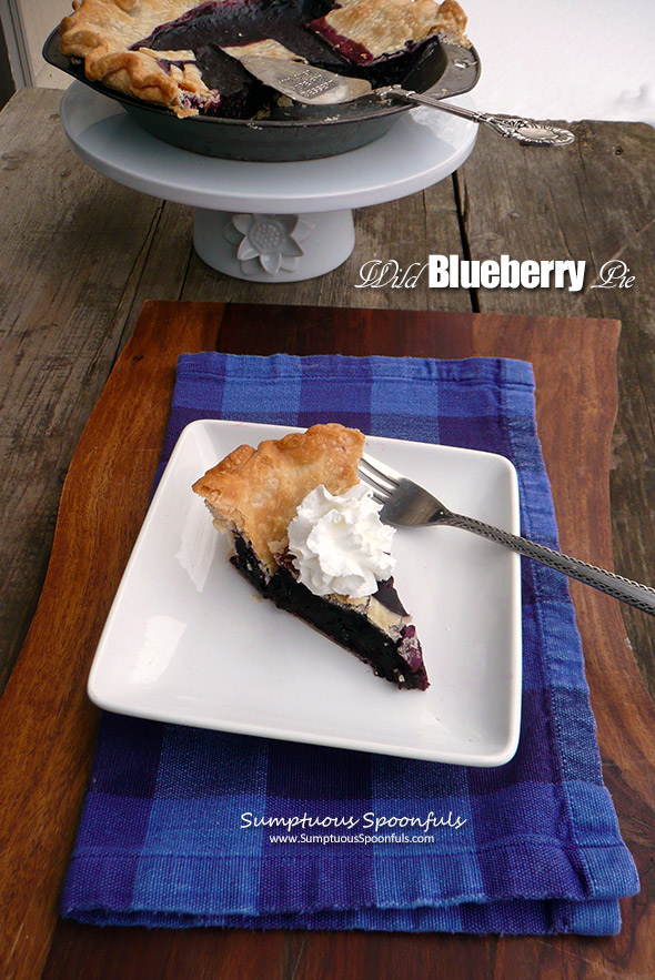 Wild Blueberry Pie ~ Sumptuous Spoonfuls #dessert #recipe