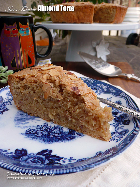 Jeri's Fabulous Almond Torte ~ Sumptuous Spoonfuls #easy #almond #dessert #recipe
