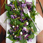 Blueberry Wild Violet Salad ~ Sumptuous Spoonfuls #purple #spring #salad #recipe