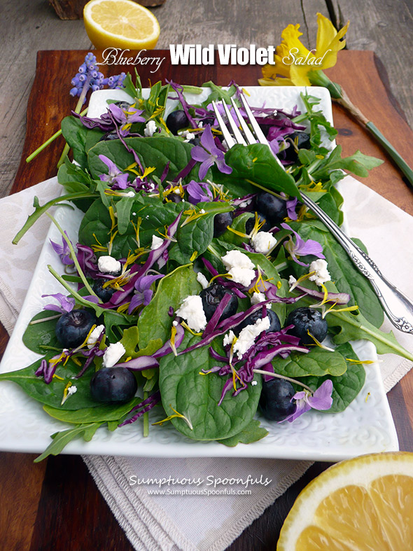Blueberry Wild Violet Salad